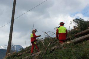 Forstarbeiter