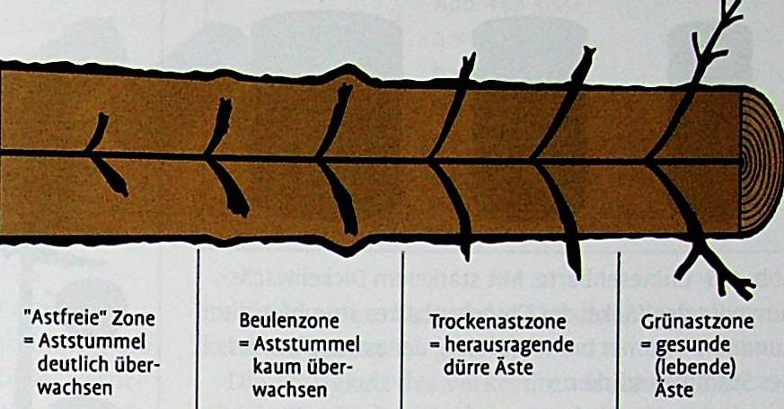 Astzonen
