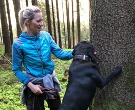 Bodogs: Wie Hunde Borkenkäfer aufspüren