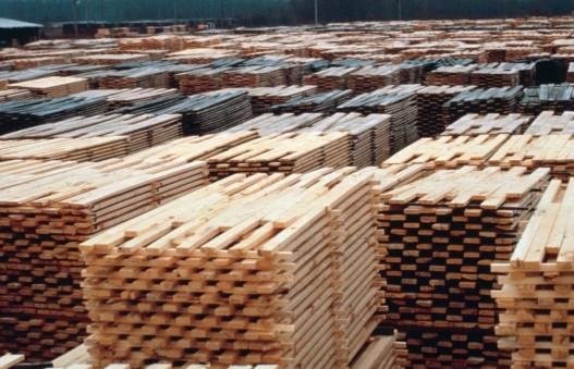 Die Holzmärkte von Übermorgen