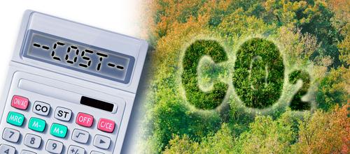 CO2-Vergütung für Waldbesitzer: Die neue große Einnahmensquelle?